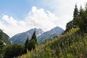 des montagnes incroyablement belles en été photo