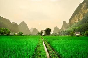 Paysage de montagne de la rivière Li dans la rizière de Yangshuo photo