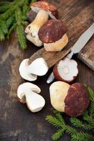 Bolets aux champignons sur fond de bois