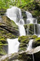 cascade de shypit 18