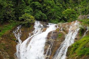 Chutes d'eau à Cameron Highlands, Malaisie photo