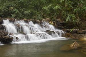 cascade de niveaux d'arbres photo