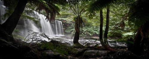 cascade en tasmanie photo