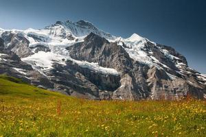 montagne de jungefrau photo