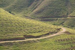 chemin de montagne photo