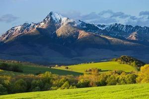 printemps dans les montagnes