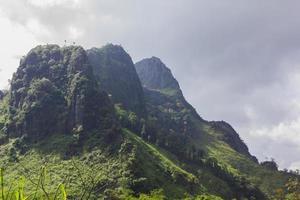 montagne et champ