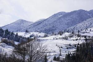 paysage d'hiver dans un village roumain - magura photo
