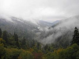 vallée de brouillard photo