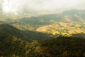 nature montagne chiangmai thaïlande