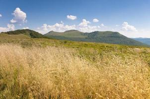 polonina wetlinska. montagnes de bieszczady.