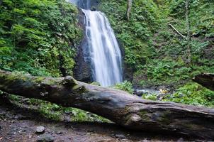 cascade du ruisseau de montagne photo