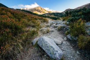 paysage de montagne avec chemin menant au sommet. Tatras, Slovaquie, Europe.