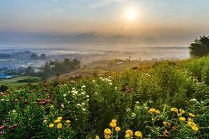 lever du soleil, fleurs et montagne photo