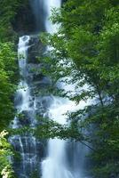 cascade dans les montagnes des cascades photo