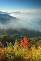 l'automne arrive photo