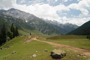 beau chemin vers les montagnes enneigées, sonamarg
