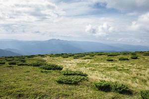bord pittoresque des montagnes des Carpates. Ukraine photo