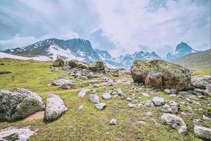 champ vert et ruisseau avec montagne de neige photo