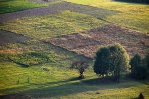 collines des Carpates photo