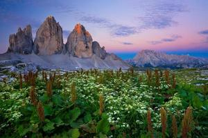 Tre Cime di Lavaredo (Drei Zinnen) Sunrise - Dolomites, Italie