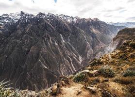 vue d'ensemble du canyon de colca photo