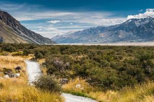 chemin en bois à aoraki / mt. cuisinier, Nouvelle-Zélande