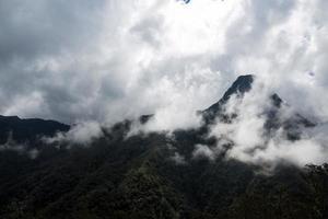 la montagne est enveloppée de brouillard
