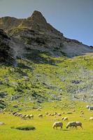 montagnes de Prokletije photo