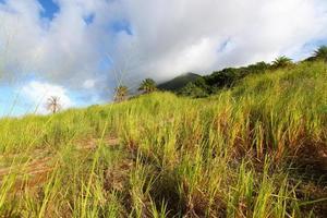 Mount Liamuiga à Saint Kitts photo