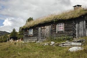 ferme dans les montagnes norvégiennes
