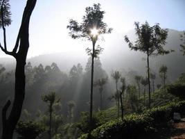 le soleil se lève sur la montagne photo