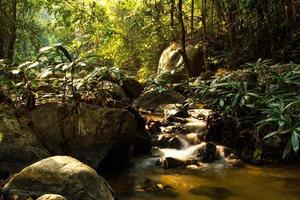Tad mok cascade chiangmai thaïlande photo