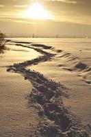 des pas sur la neige photo