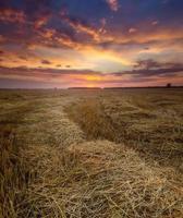 champ de chaume au coucher du soleil, paysage avec des nuages spectaculaires