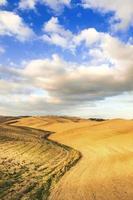 couleurs d'automne sur les champs