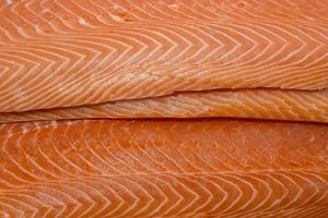 filet de saumon frais photo