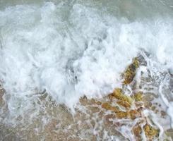 Gros plan de mousse de mer blanche photo