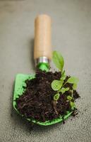 outil de jardinage avec terre et plante. icône de l'environnement photo