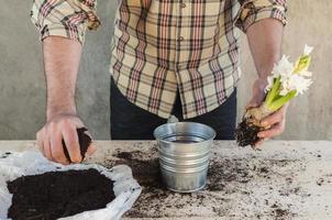 homme prenant de la terre pour remplir une plante en pot photo