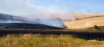 les agriculteurs agricoles brûlent des tiges de plantes après un incendie de récolte de nourriture photo