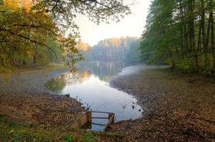 étang et arbres d'automne.