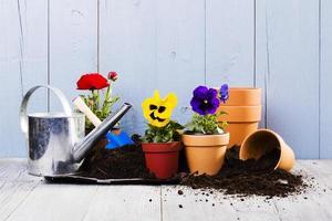 équipement pour planter des fleurs dans le jardin potager photo