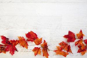 fond de Thanksgiving automne