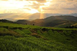 rizières en terrasses paysage sur la montagne photo