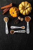 sélection d'épices pour Noël et Thanksgiving photo