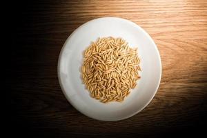 riz paddy en plaque blanche sur fond de bois