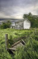 ruines de la maison de ferme