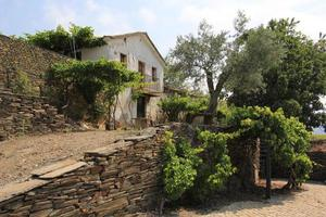 maison de campagne au portugal photo