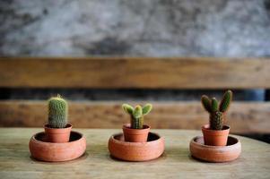 pot sur table en bois photo